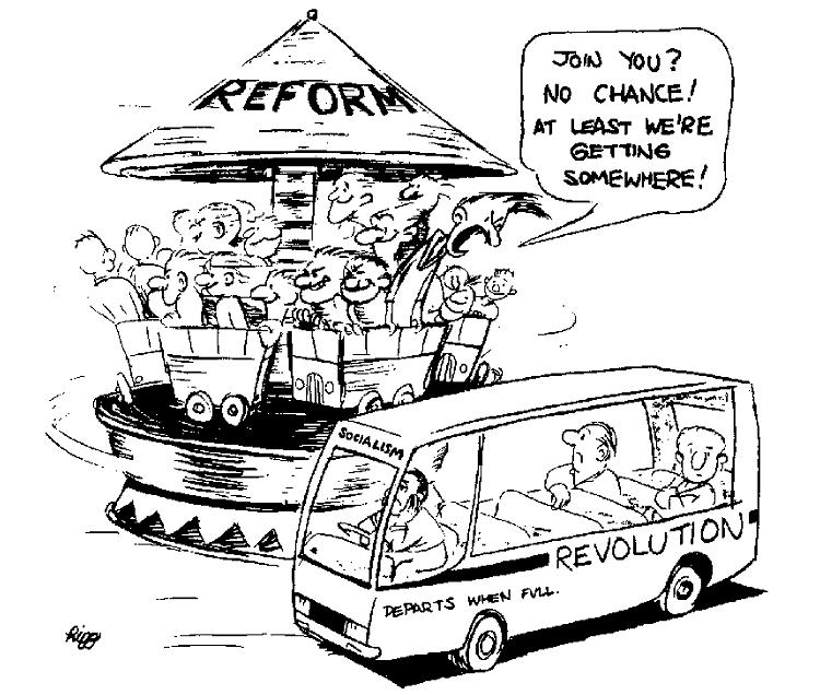 A Cartoon Showing Revolution vs Reform
